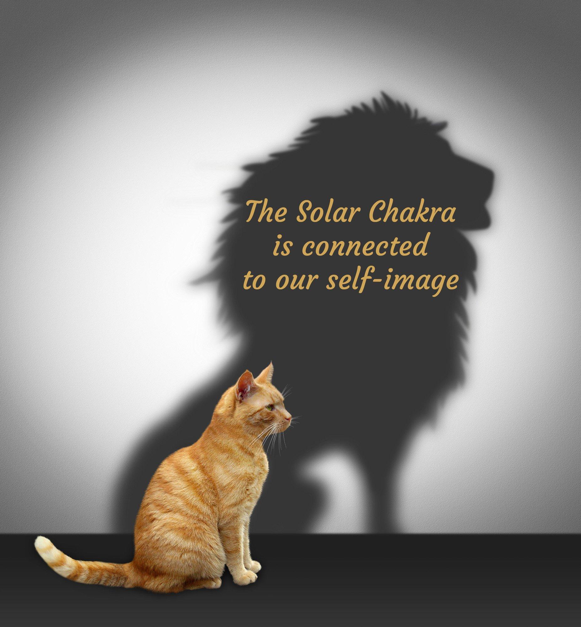 solar plexus chakra confidence boost from affirmation