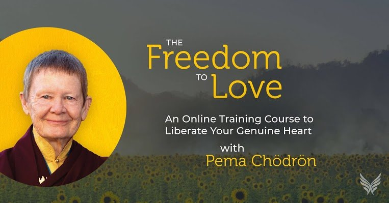 pema chodron freedom to love course