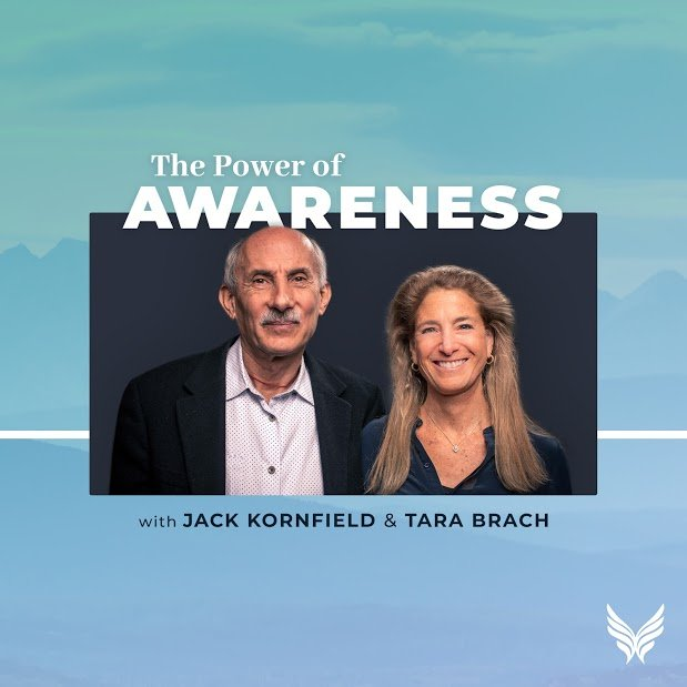 power of awareness kornfield brach